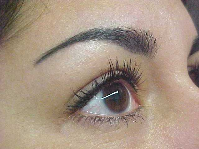 Eyebrow Threading Truro | £5 Thread And Shaping